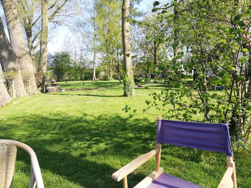 Garten unter den Bäumen #2