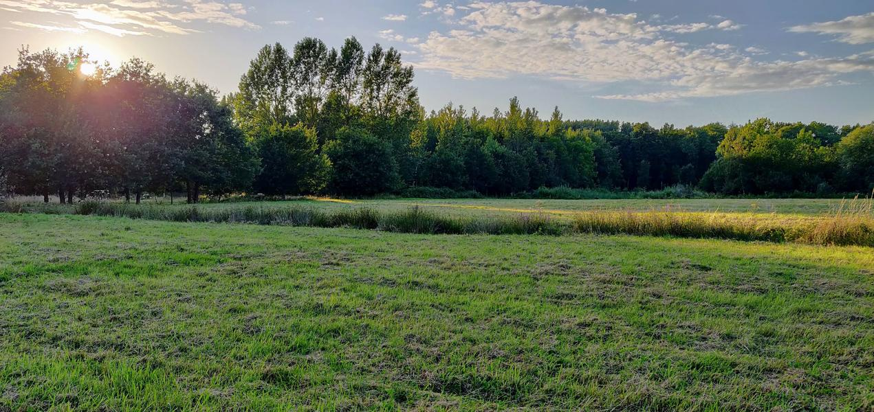The valley near the Eetgoed (Z): in Flemish fields #8