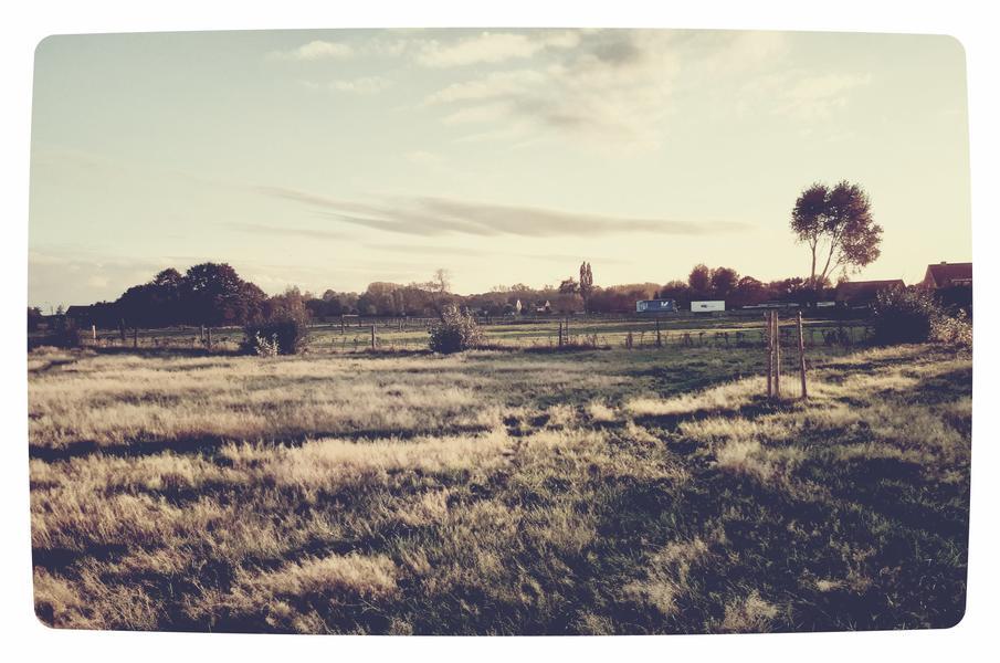 Kindvriendelijke tuin of weiland in Letterhoutem! #11