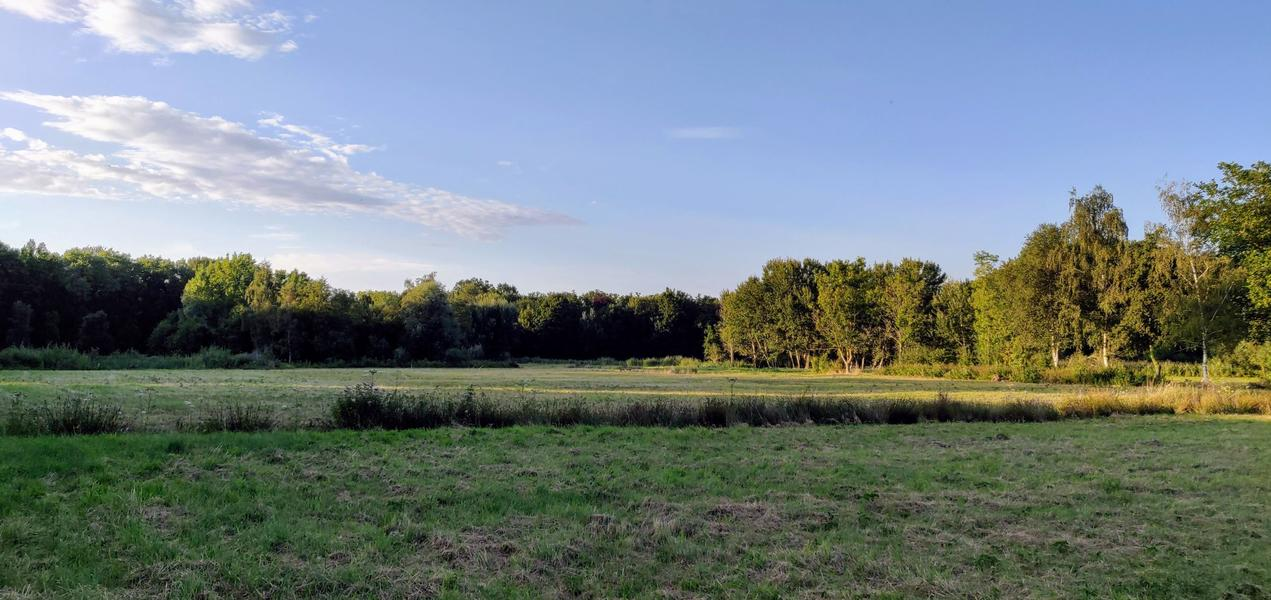 The valley near the Eetgoed (Z): in Flemish fields #3