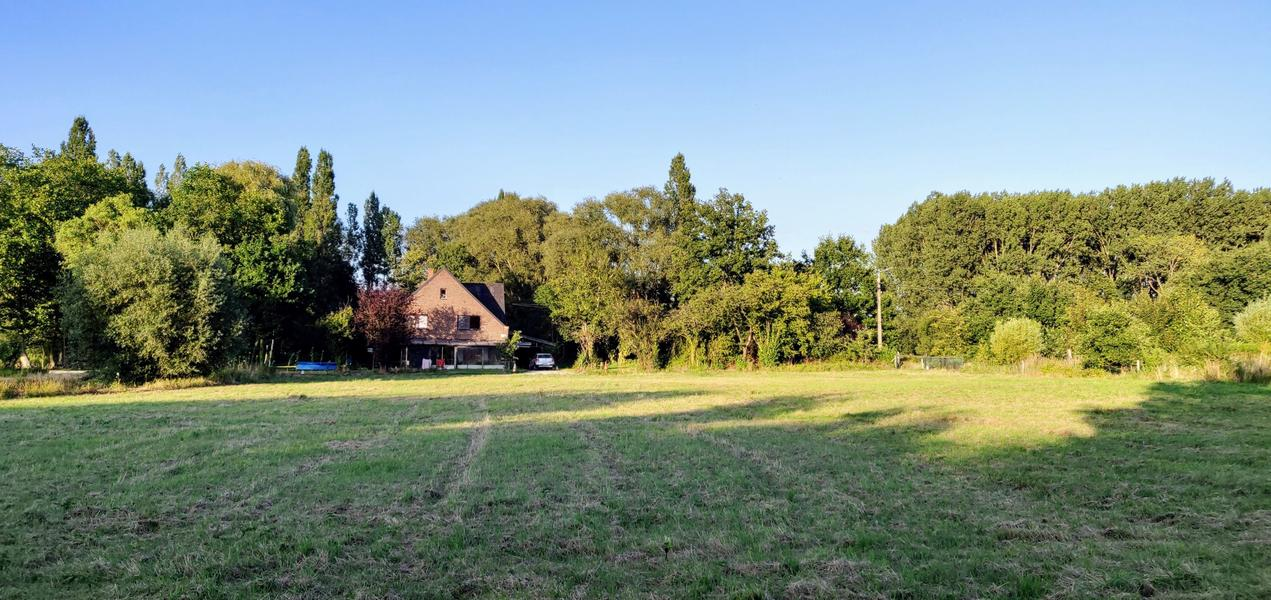 The valley near the Eetgoed (Z): in Flemish fields #7