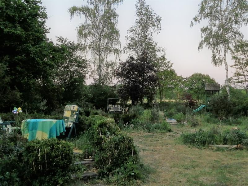 Offgrid - Ecobobo on the edge of the Loonse- en Drunense Duinen (TT) nature park #11