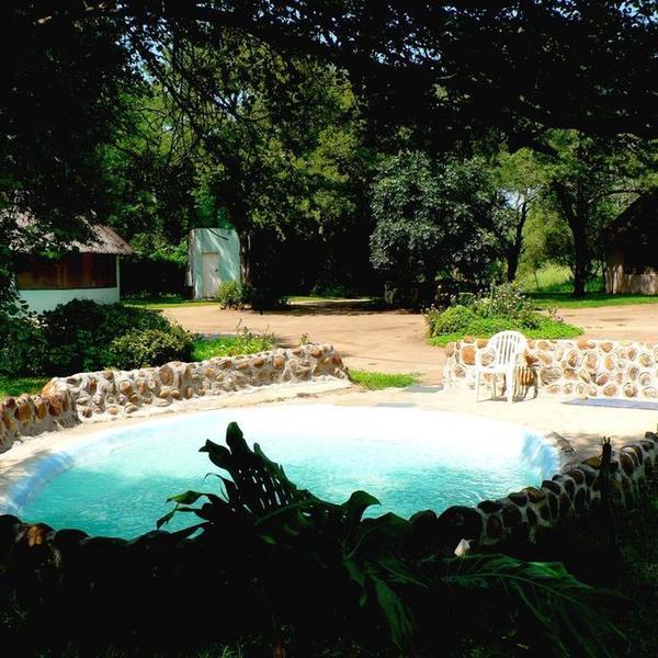Familie bushtent met 4 bedden en open douche. Pas op voor Tarzan. #4