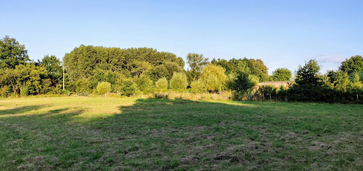 The valley near the Eetgoed (Z): in Flemish fields #6
