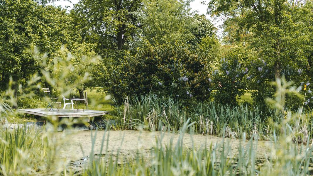 Magisch kamperen in boomgaard binnen kunstgemeenschap #7