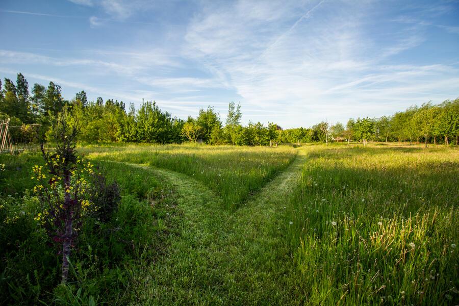 Geweldige plek in de Vlaamse Ardennen #1