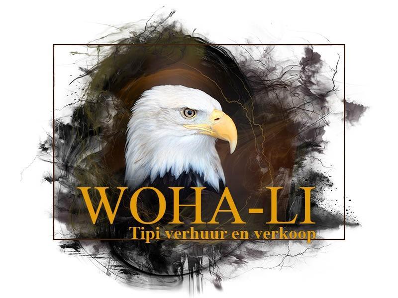 Relax at the woha-li tipi #4