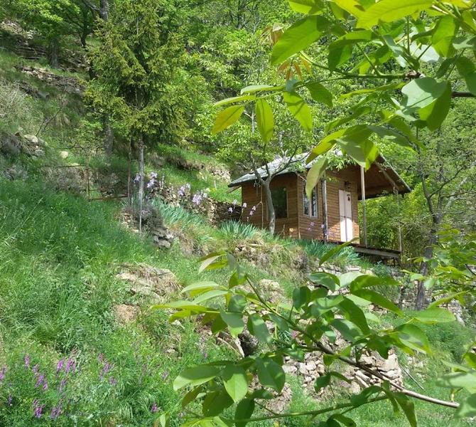 Paradise mountain hut. #2
