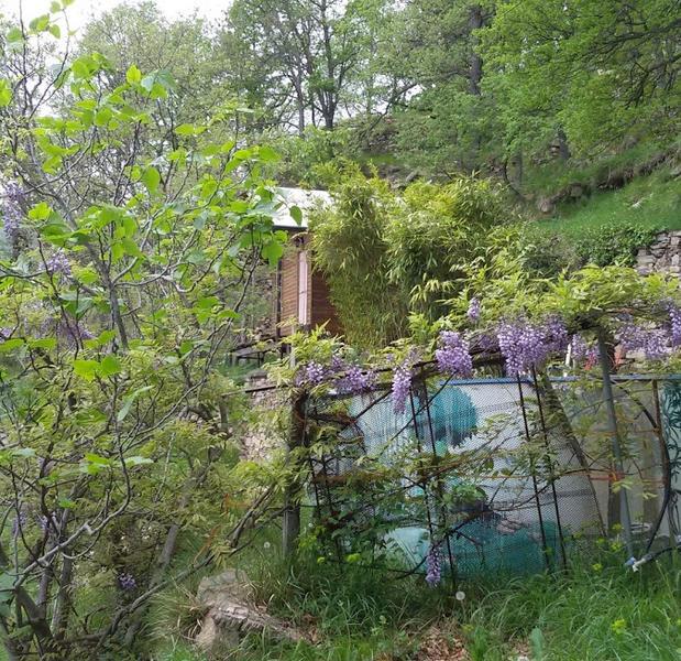 Paradise mountain hut. #4