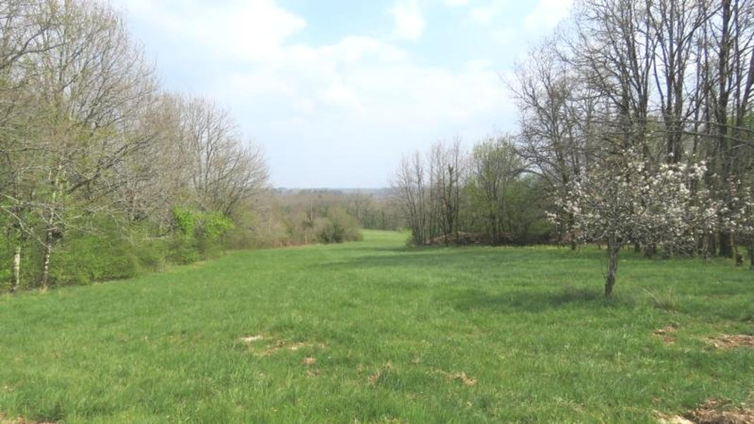 Casa Nyasa, naturisten camperplek in het hart van de groene Dordogne #3