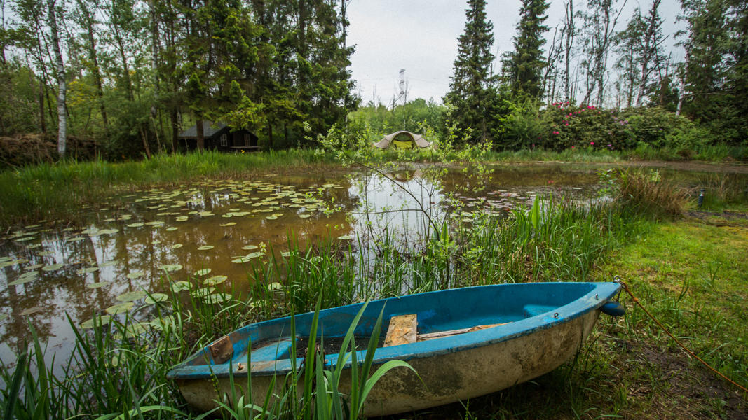 Nature campspace #3