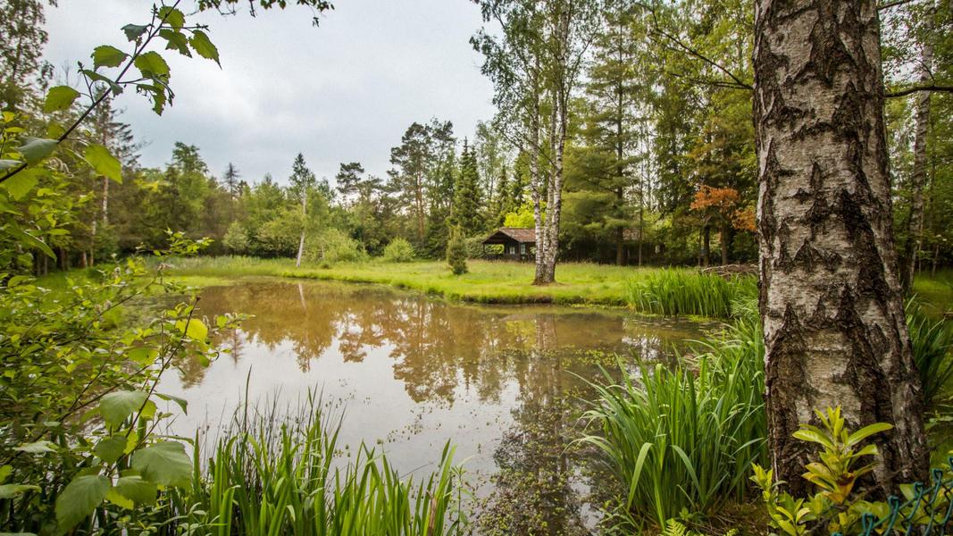 Nature campspace #5