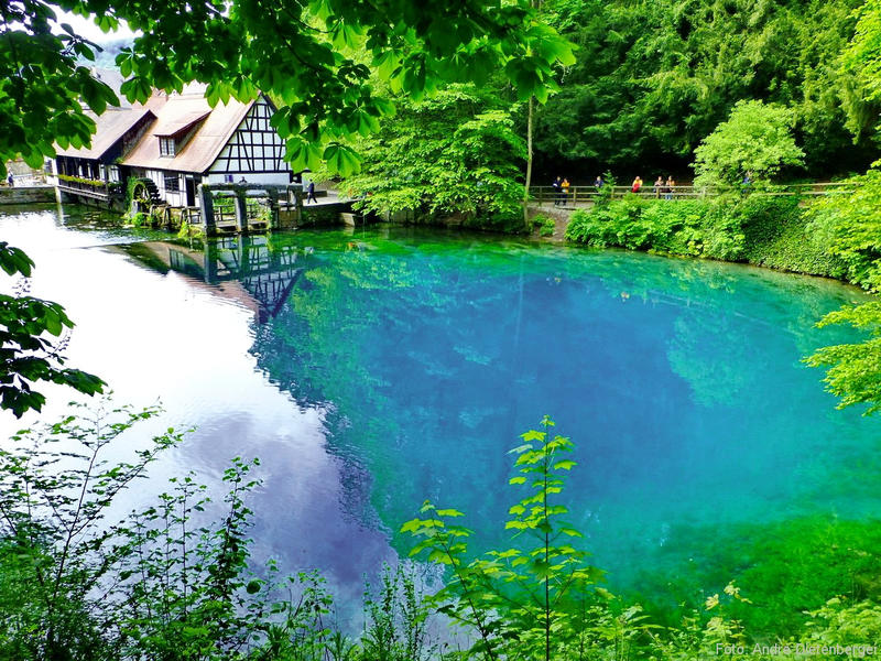 country relish on the Swabian Alb (near Ulmer Münster and the Blautopf) #4
