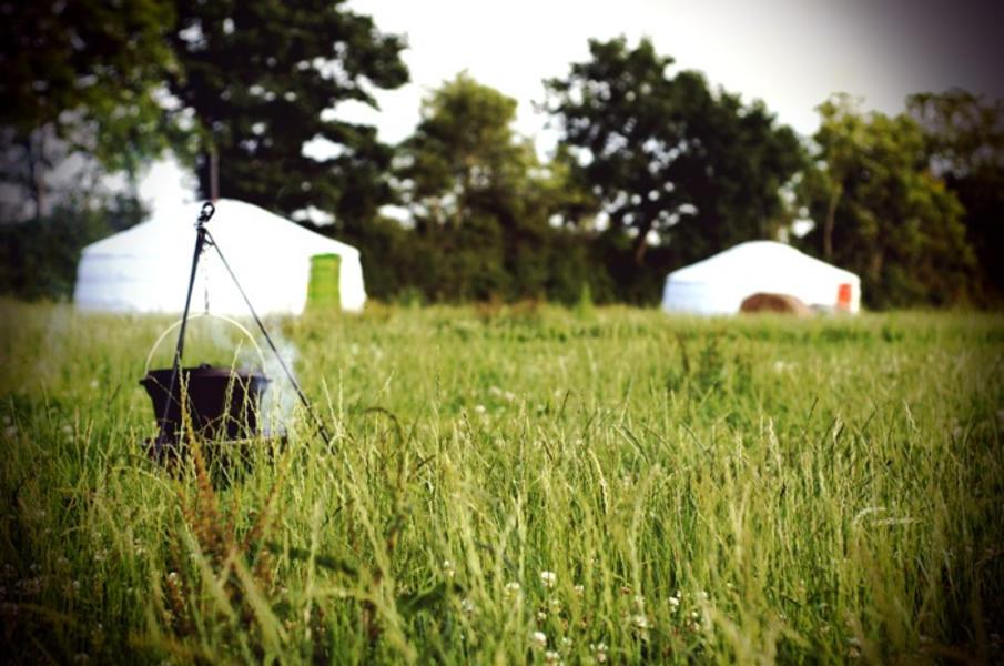 Somerset Yurts #3