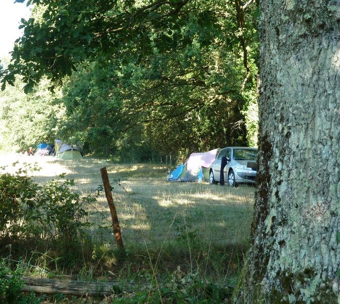 The walnut grove #1