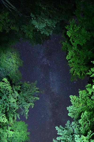 Hunza Ecolodge #31