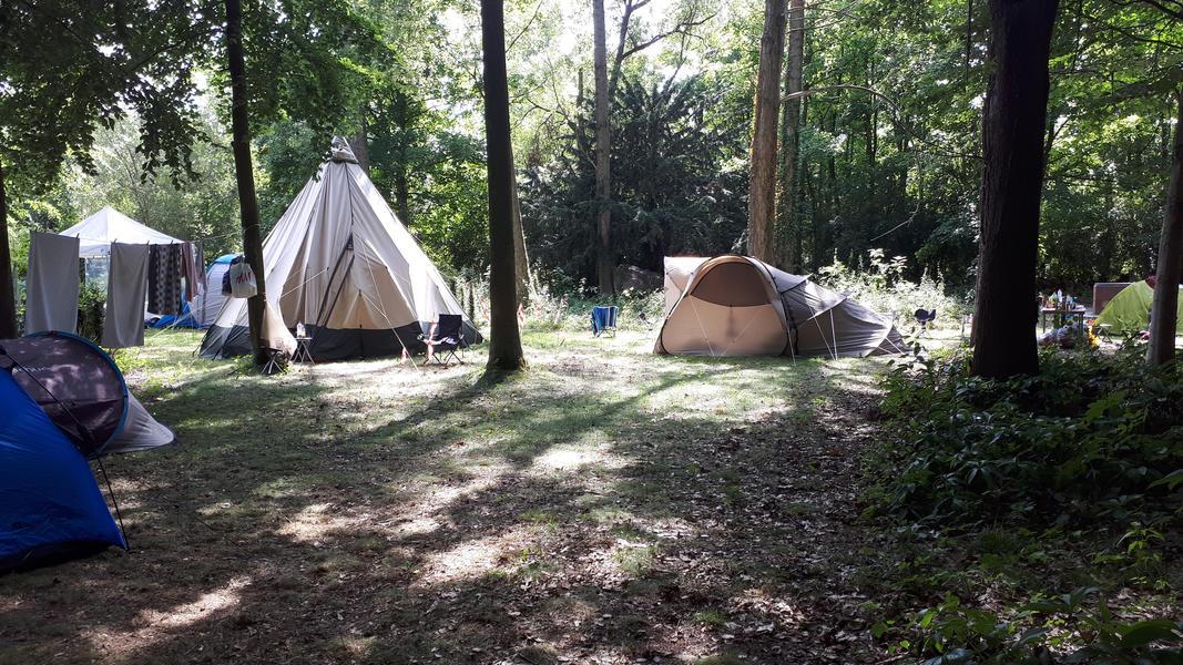 Tomorrowland Camping Gardens #10