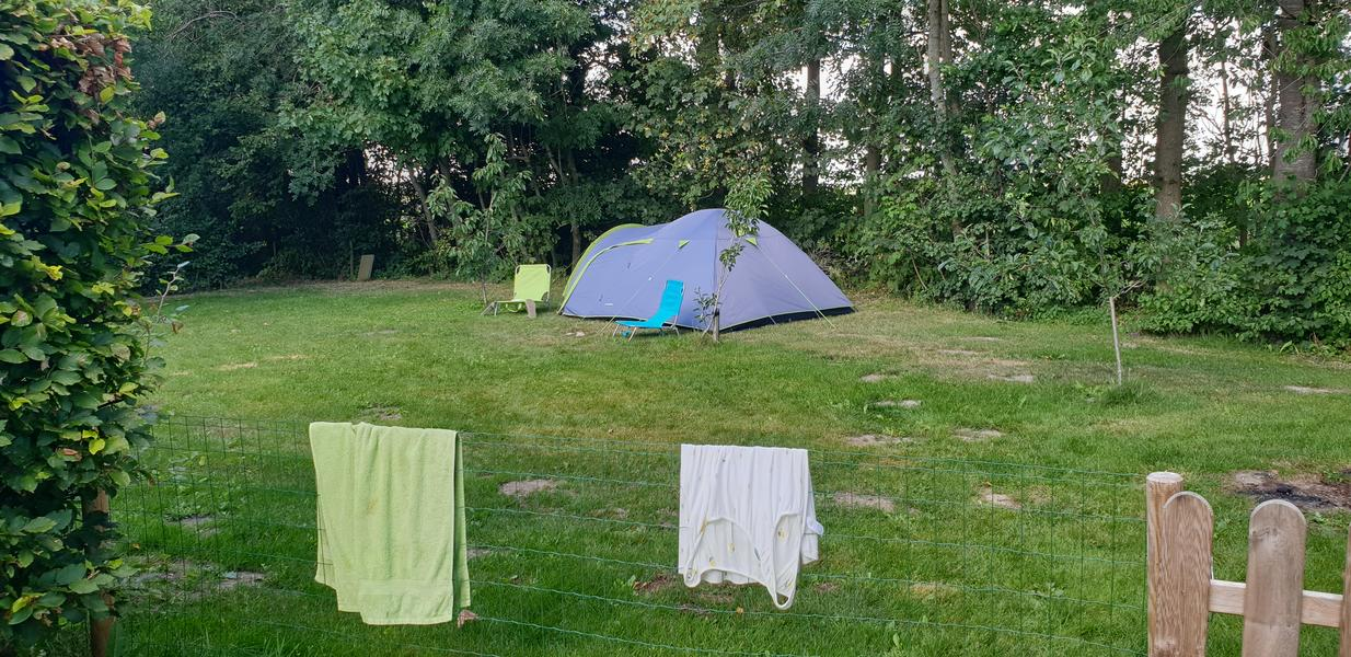 Rustic campsite on our farm #2