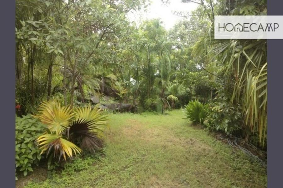 Airlie Private Rain Forest #1