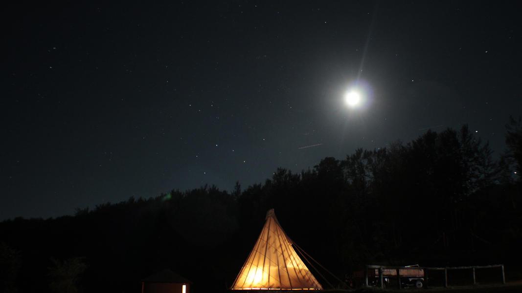Linden Tree Retreat & Ranch #30