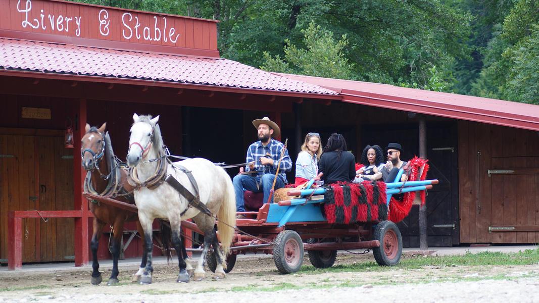 Linden Tree Retreat & Ranch #35