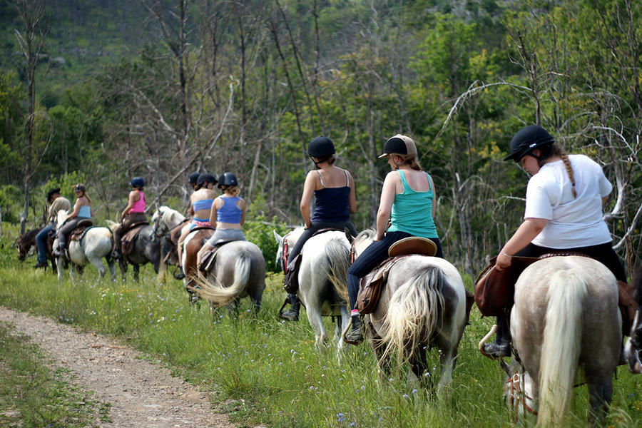 Linden Tree Retreat & Ranch #8