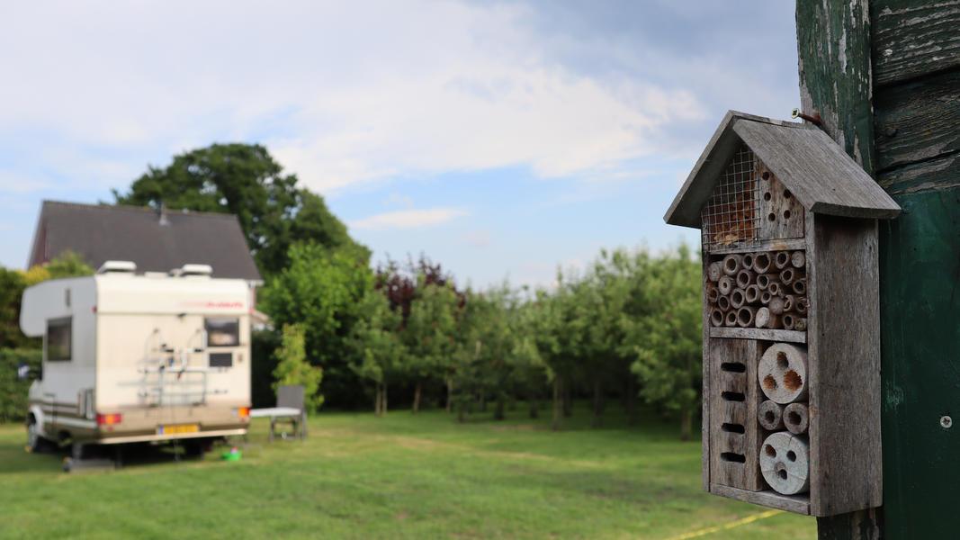 Ruhiger Ort im Obstgarten mit Blick auf Vogelwanderweg #2