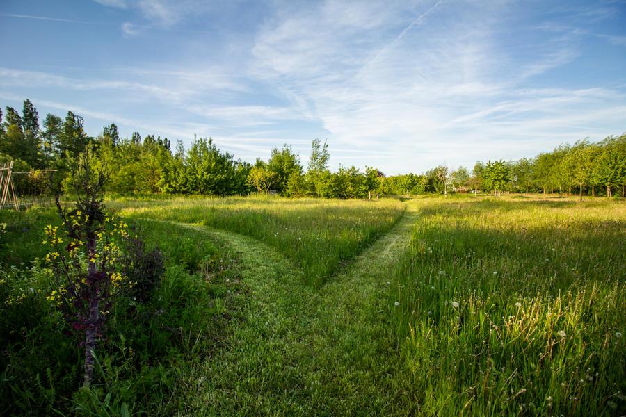 Geweldige plek in de Vlaamse Ardennen # 2 #2