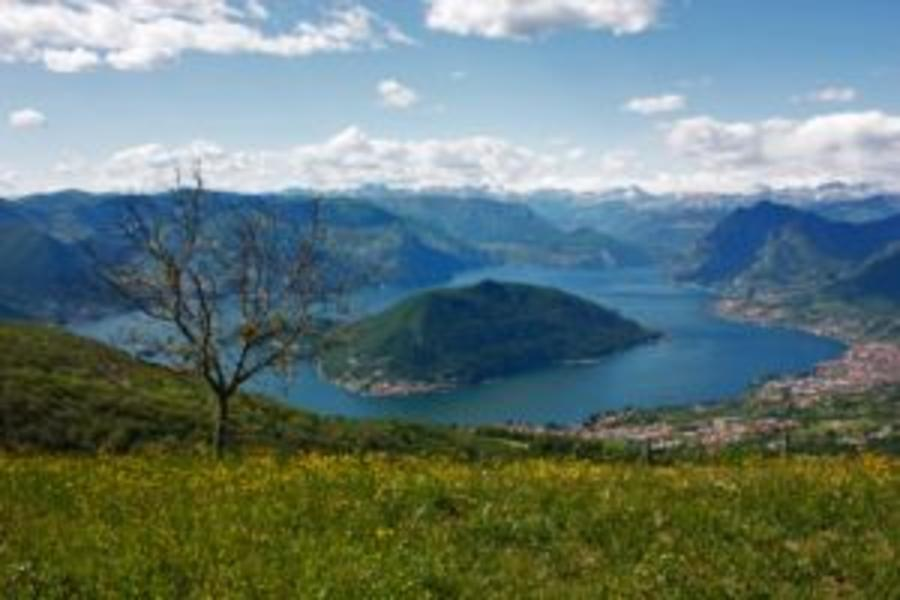 La Bassotta: praten over permacultuur en klimmen #12