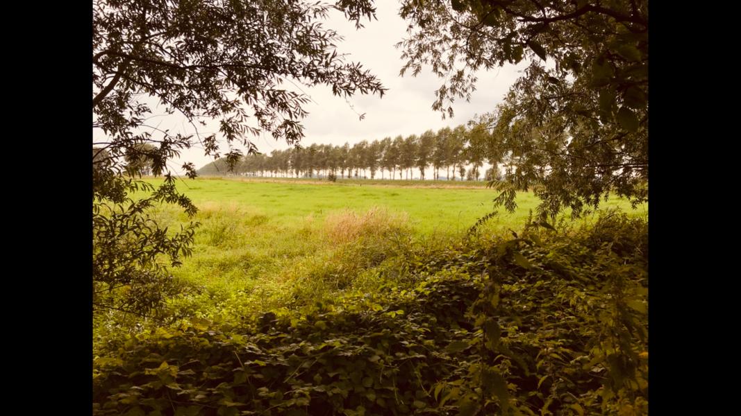Eine Oase der Ruhe, weniger als 30 km vom Meer und Wald der Stadt (Gent, Terneuzen, ...) entfernt! #2