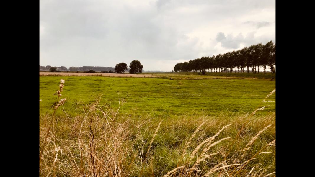 Eine Oase der Ruhe, weniger als 30 km vom Meer und Wald der Stadt (Gent, Terneuzen, ...) entfernt! #4