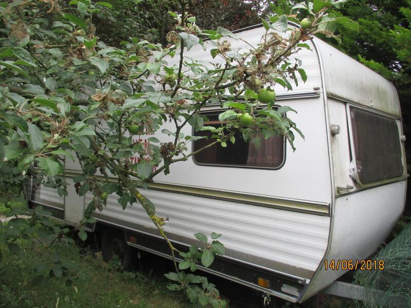 Romantic caravan by the forest #1