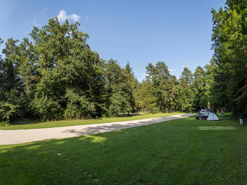 Rent a pitch in beautifull forest by the Alpine river Savinja #7