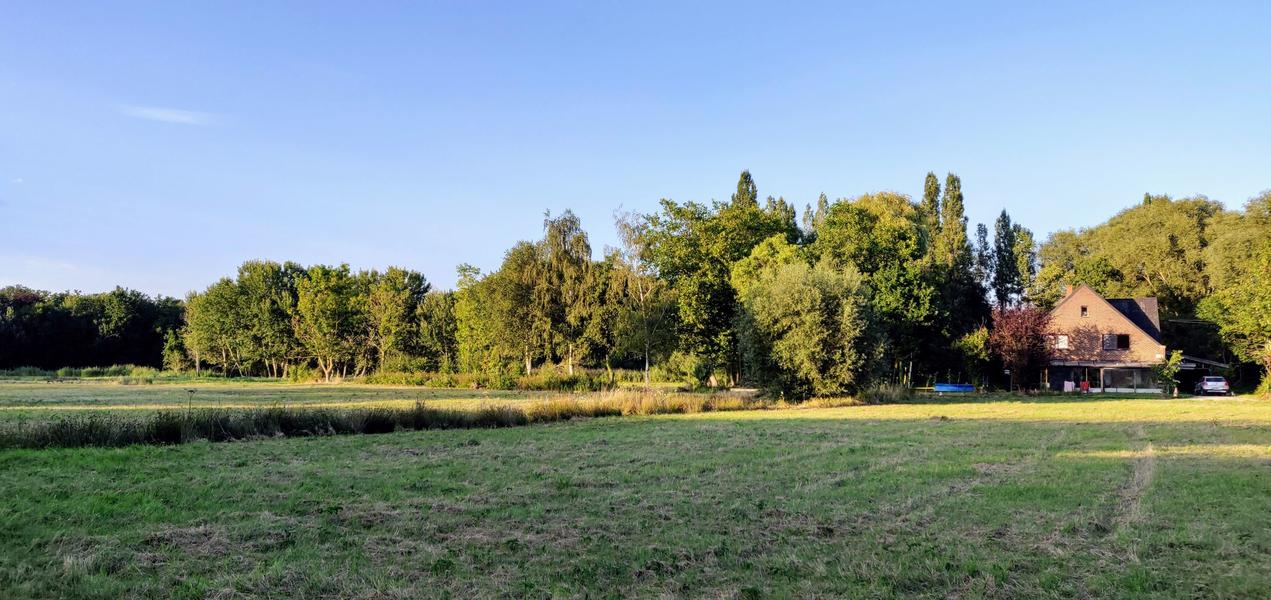 The valley near the Eetgoed (Z): in Flemish fields #4