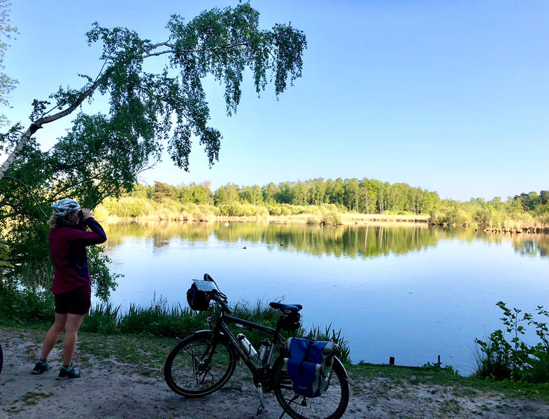 In the green heart of the Kempen near # nature reserves, Molse sand pits, Zilvermeer ... #10