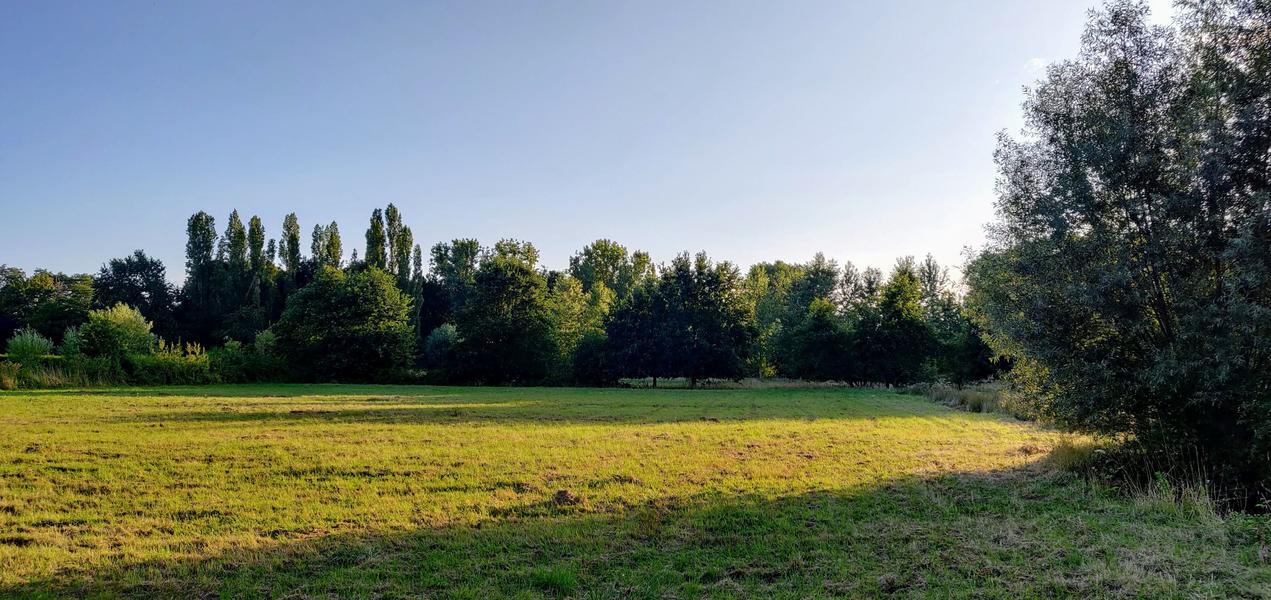 The valley near the Eetgoed (Z): in Flemish fields #5