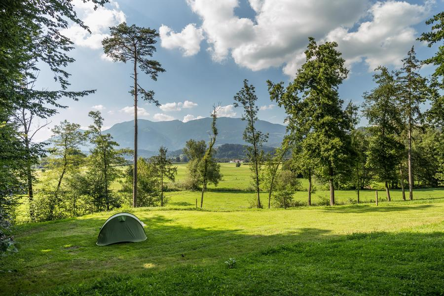 Rent a pitch in beautifull forest by the Alpine river Savinja #5