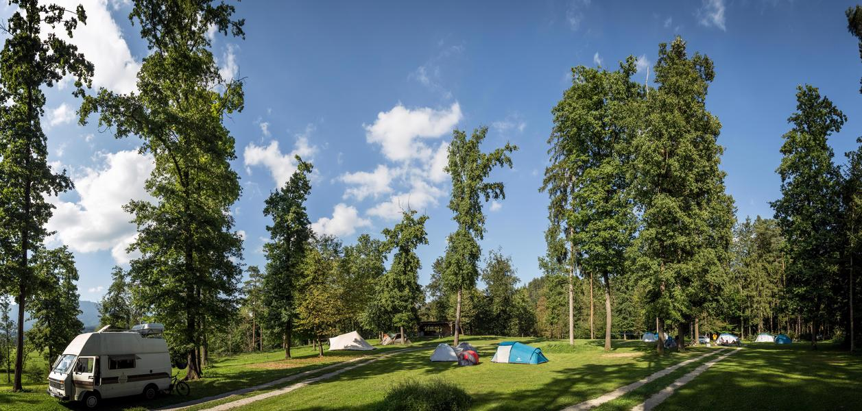 Rent a pitch in beautifull forest by the Alpine river Savinja #4