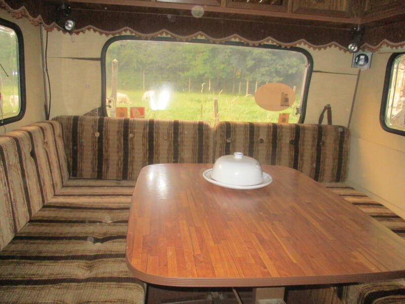 Romantic caravan by the forest #13