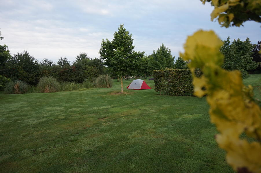 Quiet spot in the orchard with a view of the Pieterpad #9