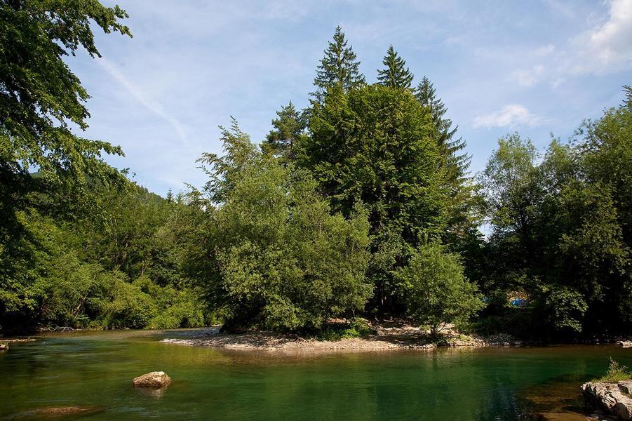 Kampeerplaatsen op 5 meter van de rivier Savinja! #6