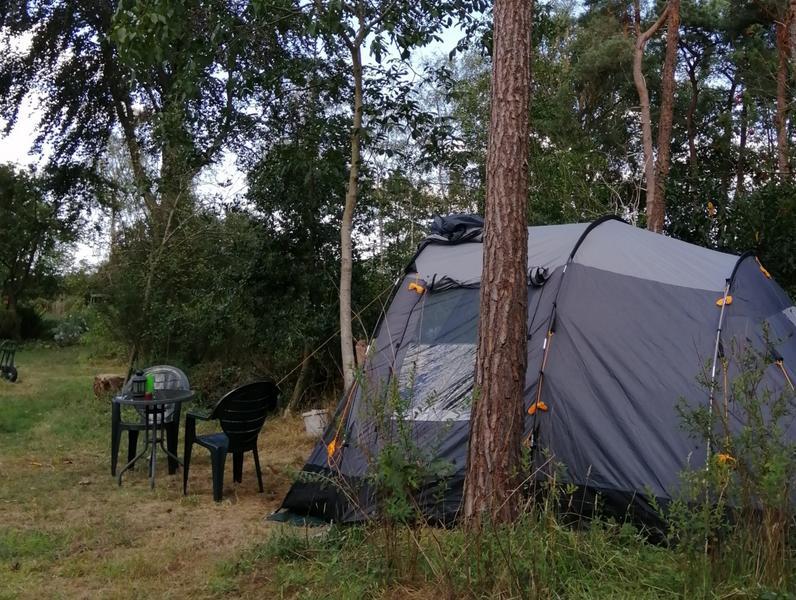 Offgrid - Ecobobo on the edge of the Loonse- en Drunense Duinen (TT) nature park #1