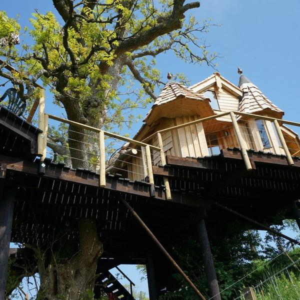 A real Tree House, a real craft masterpiece in an ancient Ash Tree with 360 degree views. #2