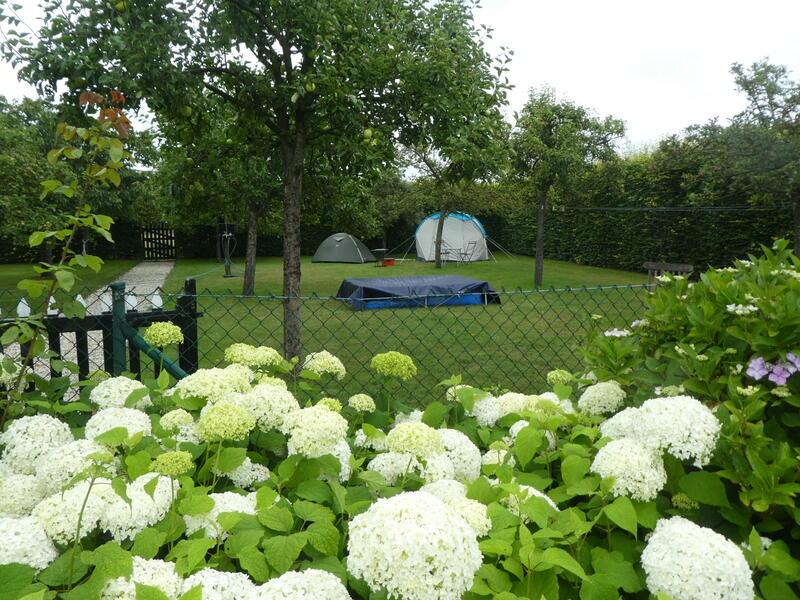 Glamping im Obstgarten auf 'Farm under the Oak'. #4
