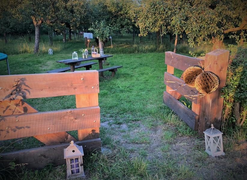 Lovely quiet orchard between meadows, near Zutphen #4