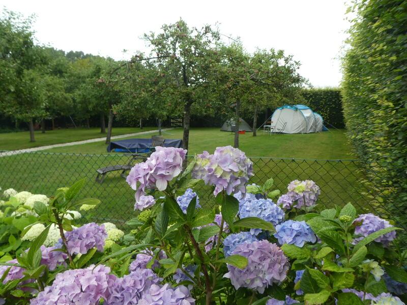Glamping im Obstgarten auf 'Farm under the Oak'. #5