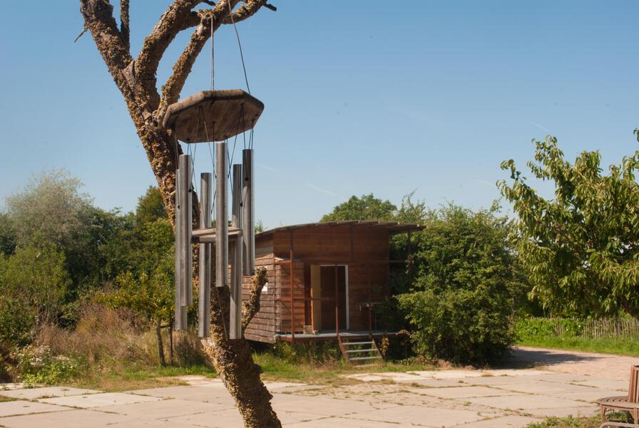 Camping in a de Waard Enlarged Herring Gull, on the organic bynamic farm #8