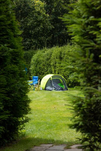 Aan de bosrand, gezellig mini camping Westenenk #6