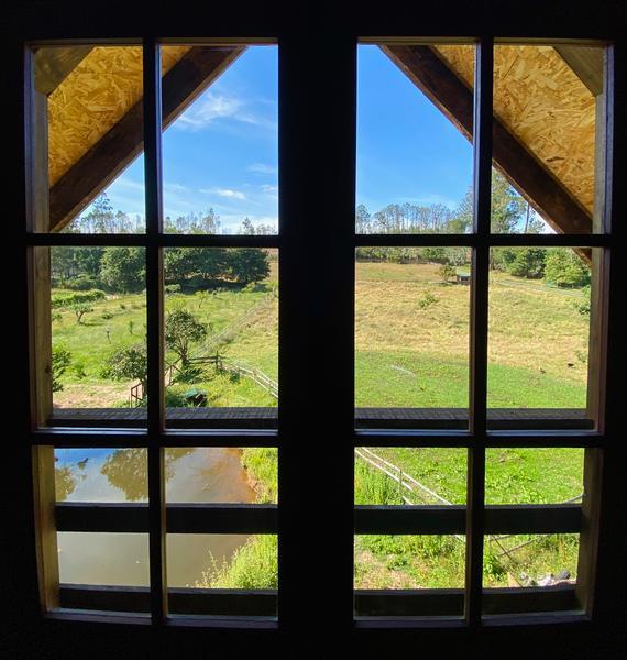 Tree House  - Vale da Silva Villas #4