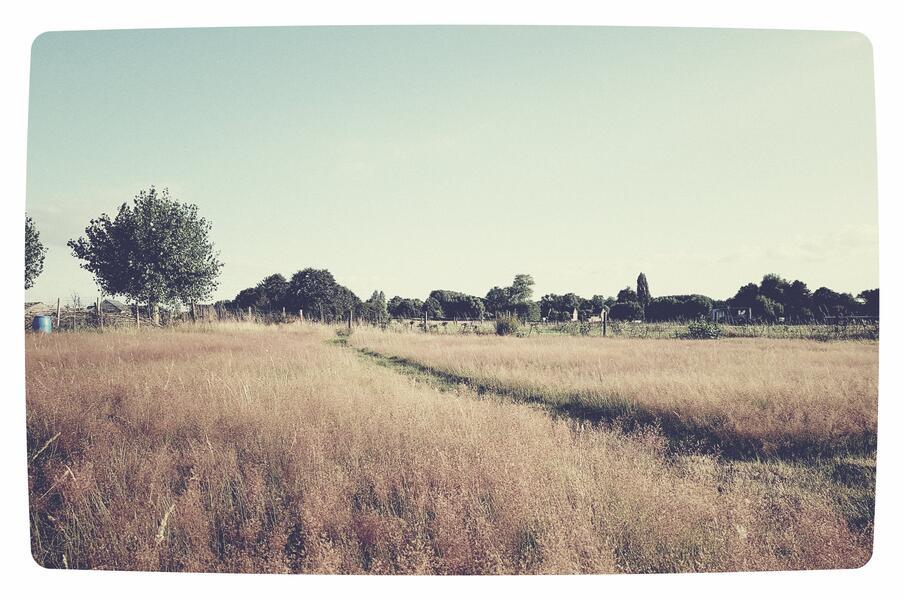 Kindvriendelijke tuin of weiland in Letterhoutem! #1